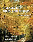 diseases of trees and scrubs