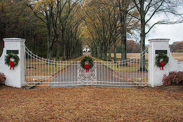 07 - Old Gate of Opportunity with decorations