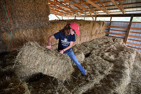 07 - Female student moving hay bales