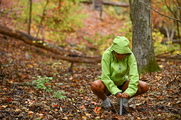 08 - Student taking a soil sample in the woods