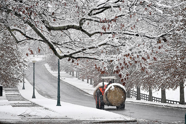 07 - A tractor transporting hay through the snow